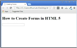 html5 form1 example output