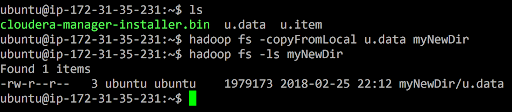 Hadoop copyFromLocal Command